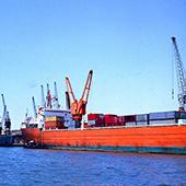 铜导体实心聚乙烯绝缘聚氯乙烯内套裸钢丝编织铠装船用同轴电缆