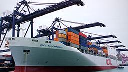 上上电缆服务于中国远洋运输公司