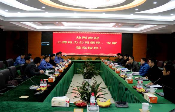 上海电力公司、上缆所领导、专家一行来上上电缆交流考察