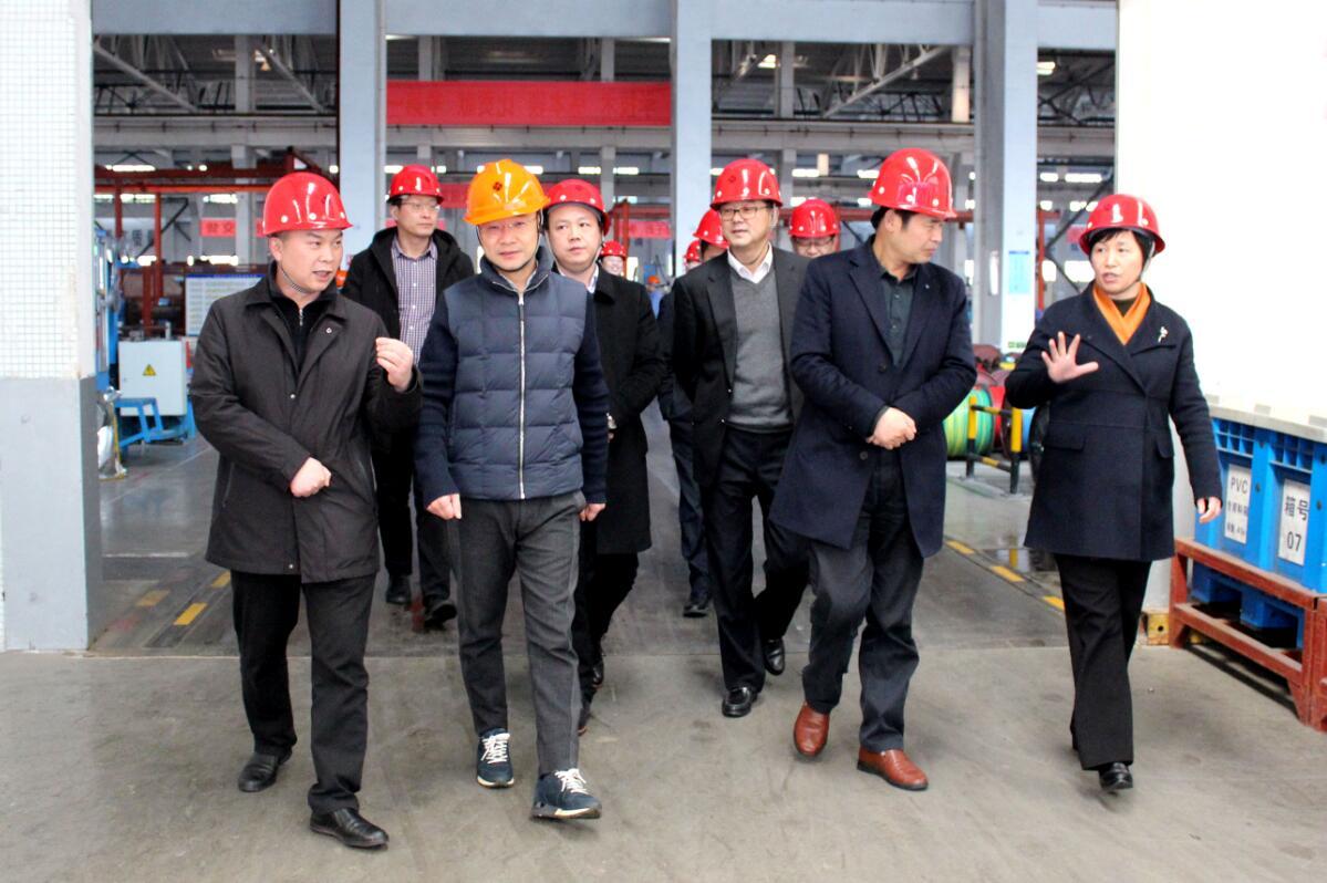 2019年3月7日,广安市岳池县考察团来上上电缆参观考察